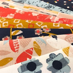 Dashwood Studio - Paper Meadow
