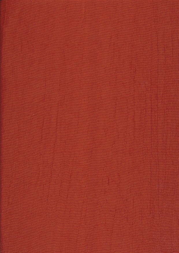 Washed Taffeta - Rust