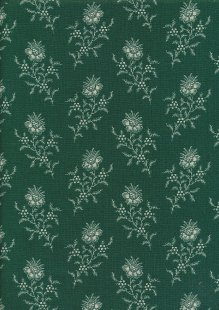 Braveheart by Edyta Sitar for Andover Fabrics - D#9175 C#G