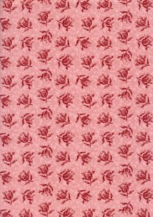 Little Sweetheart By Edyta Sitar For Andover Fabrics - Ballet Slipper Peony 8829C#E