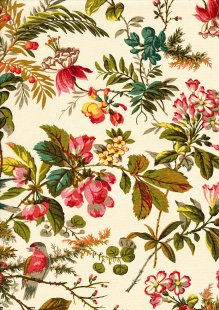 Sequoia By Edyta Sitar For Andover Fabrics - 2/8750L Foliage Day