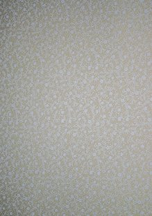 King Fisher Fabrics - Classic Tone On Tone SSF20065-WT