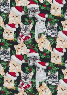 John Louden Christmas Collection - Xmas Cats