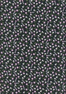Kingfisher Fabrics - The Kids Are Alright Black 49708