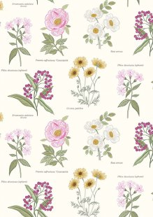 Lewis & Irene - Botanic Garden A453.1 Botanic flowers on cream