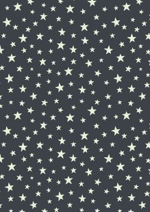 Lewis & Irene - Christmas Glow C48.3 Glow stars on night-time