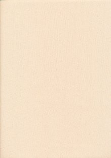 Rose & Hubble - Rainbow Craft Cotton Plain Beige 7