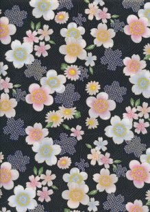 Authentic Japanese Fabric - 43