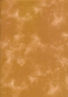 Sevenberry Marble - 87419-1/19 Tan Brown