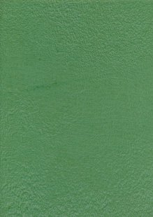Sew Simple Batik Basic - Green SSD1633