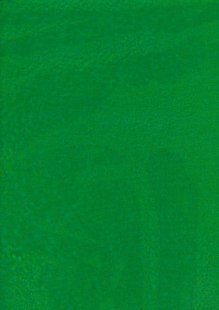 Sew Simple Batik Basic - Green SSD1632