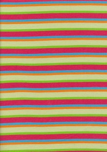 Jersey Fabric - Stripe 1