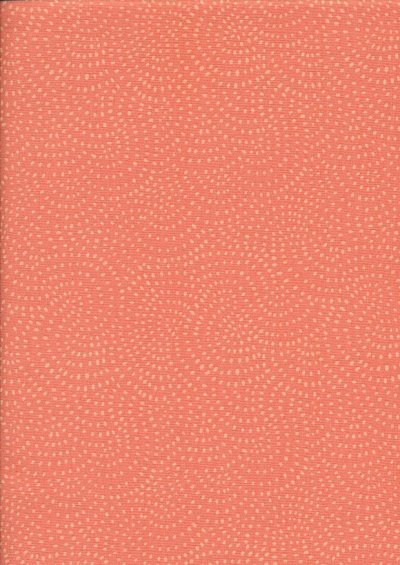 Dashwood Studio - Twist 1155 Coral